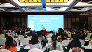 中国法院信息化第三方评估报告
